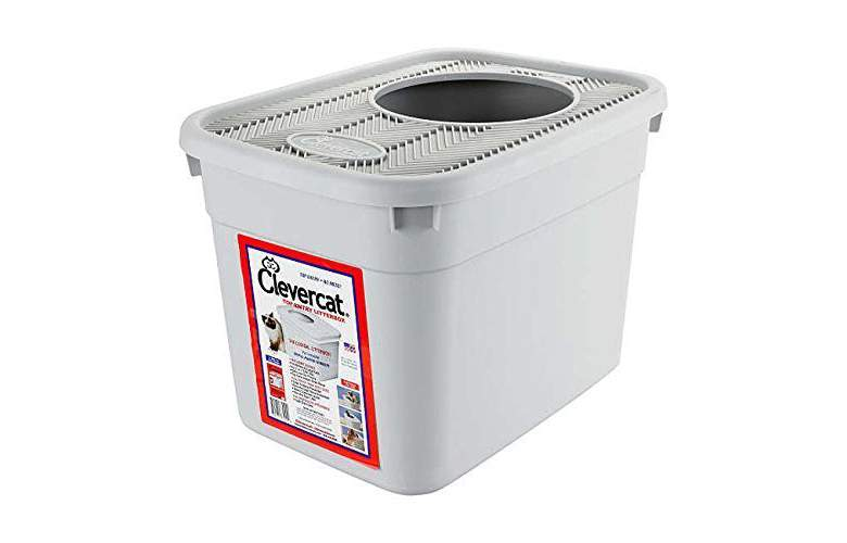 Clevercat Top Entry Litter Box Review