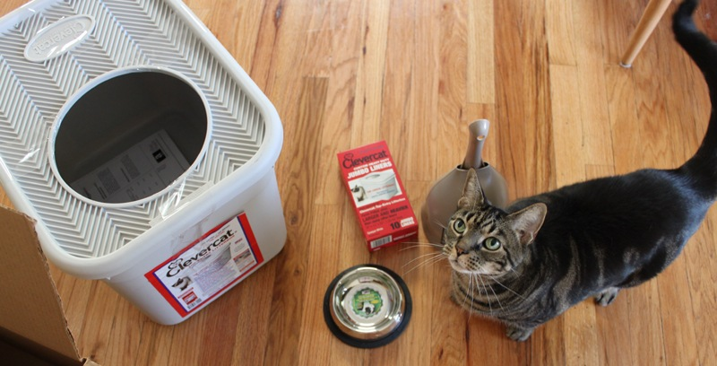 how to find cat urine with uv light