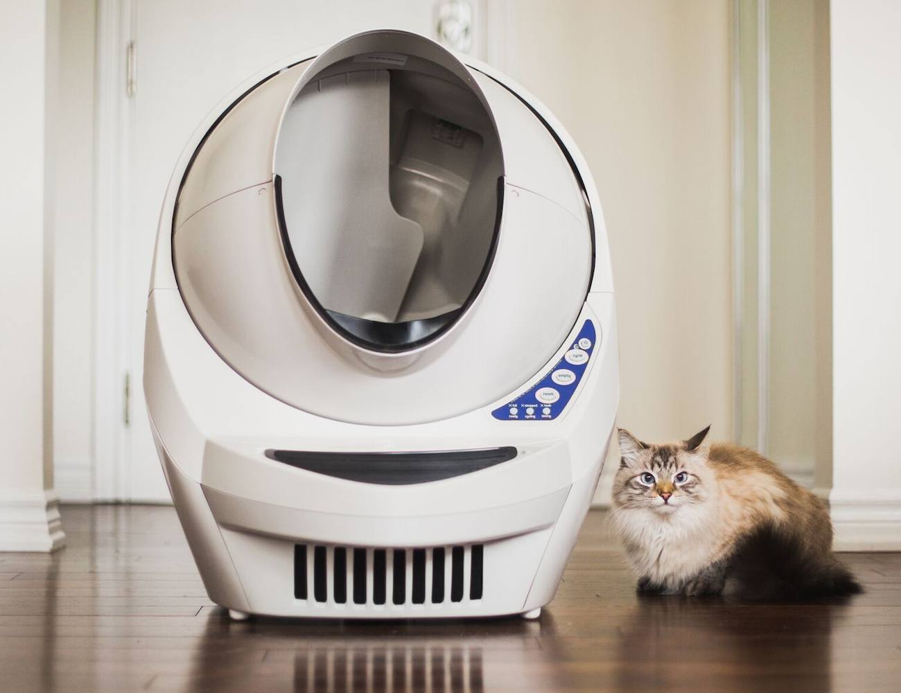 Litter Robot 2 Automatic Litter Box Review