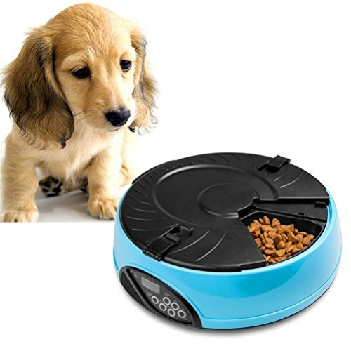 Qpets 6 Meal LCD Automatic Pet Feeder Review