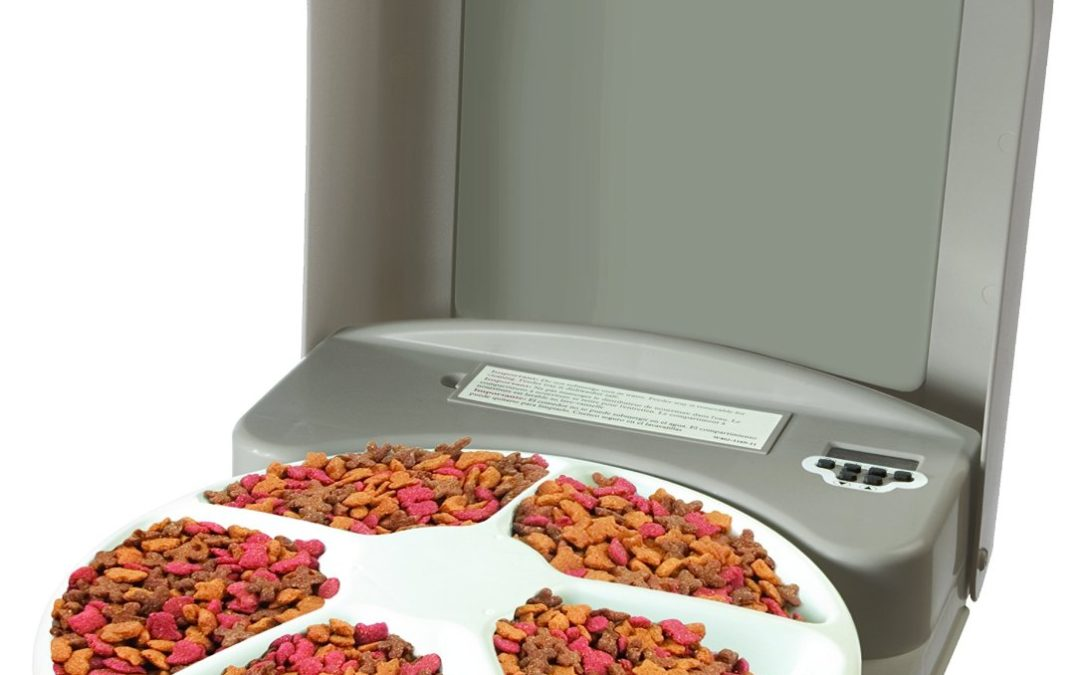 PetSafe 5 Meal Electronic Pet Feeder Review